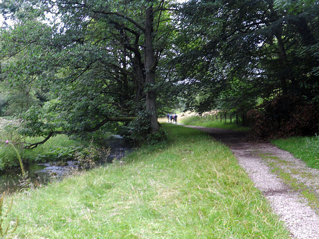 Footpath beside the River Goyt
