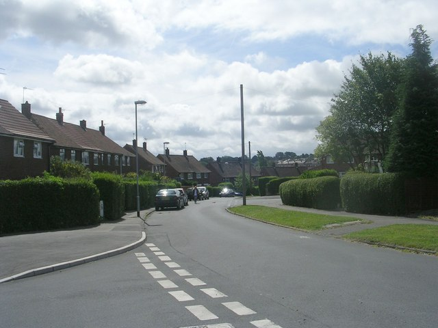 Landseer Drive - viewed from Landseer View