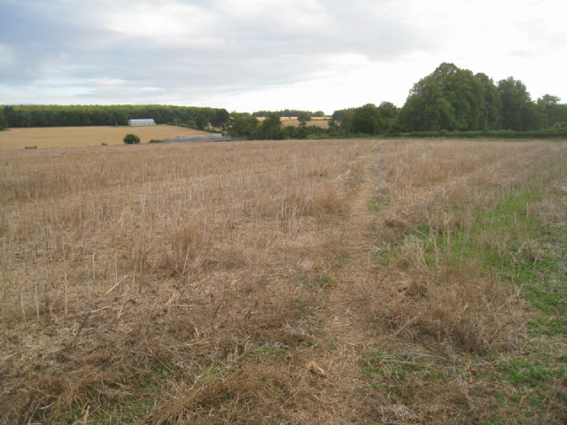 Path through harvested field