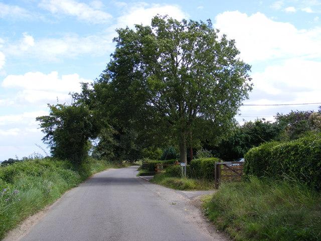 Holly Road