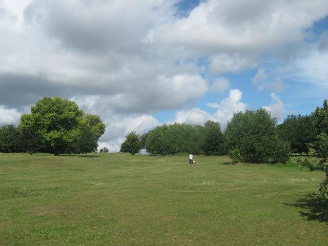 Recreational Ground beside Bursted Wood (2)