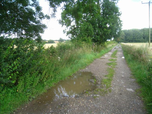 Walking a muddy track