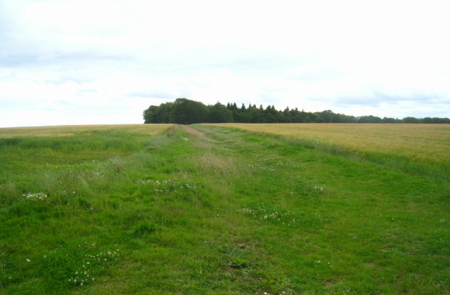 Looking towards Round Wood