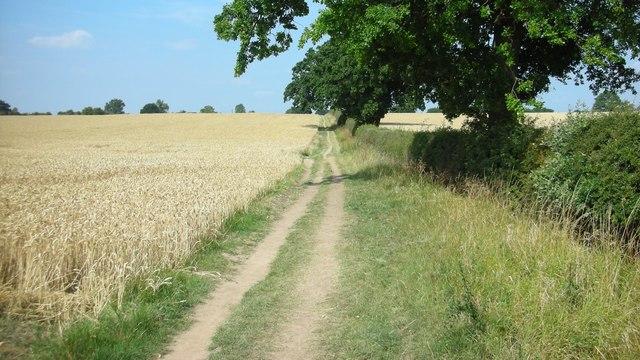 Footpath to Old Milverton