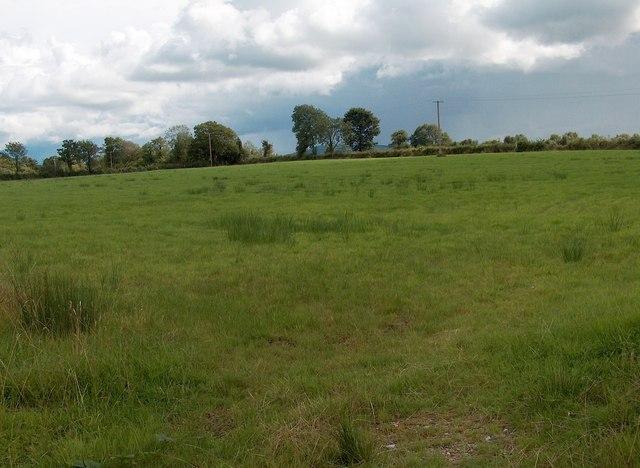 Meadow at Cappanouk