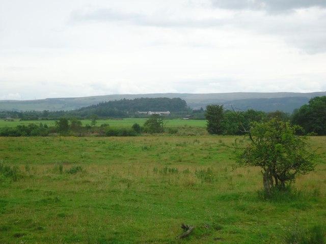 Wester Cornton, rough grazing [2]