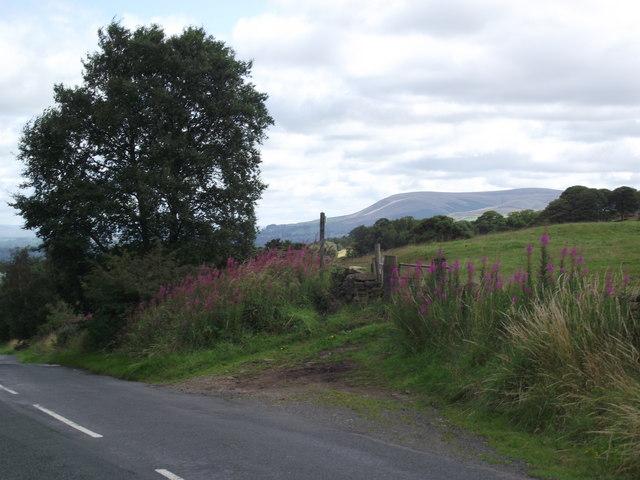 Road into York