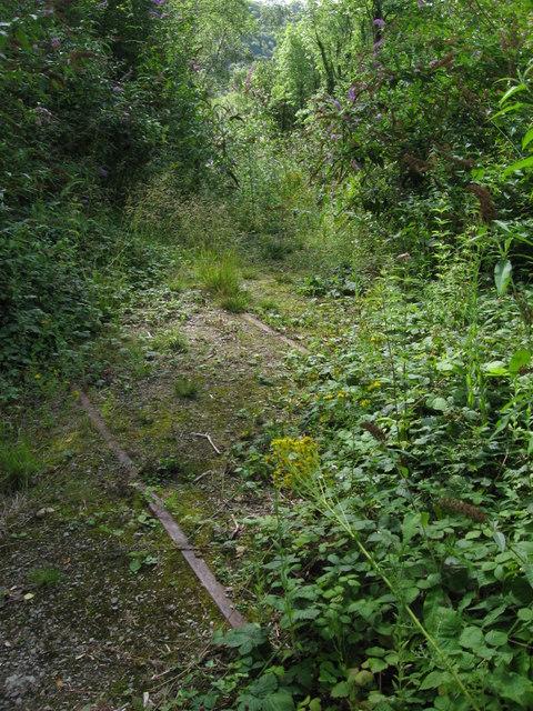 Disused railway near Tintern Quarry