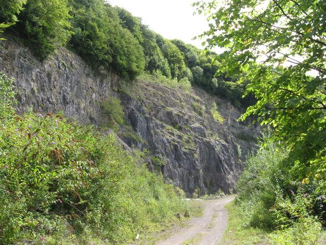 Part of Tintern Quarry