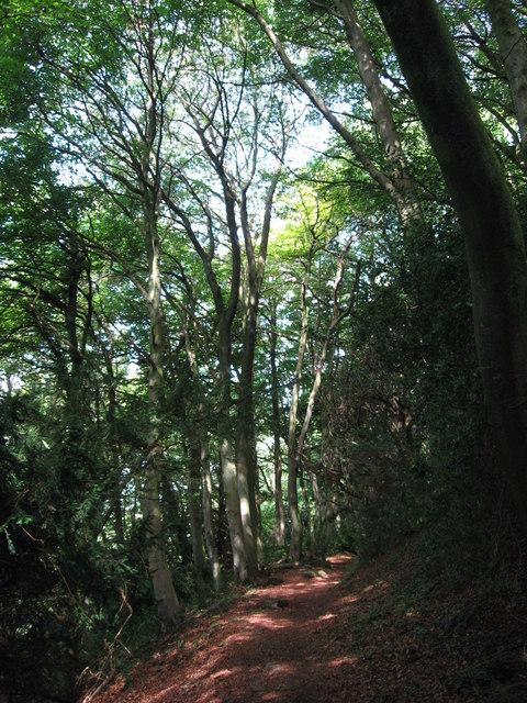 On Offa's Dyke