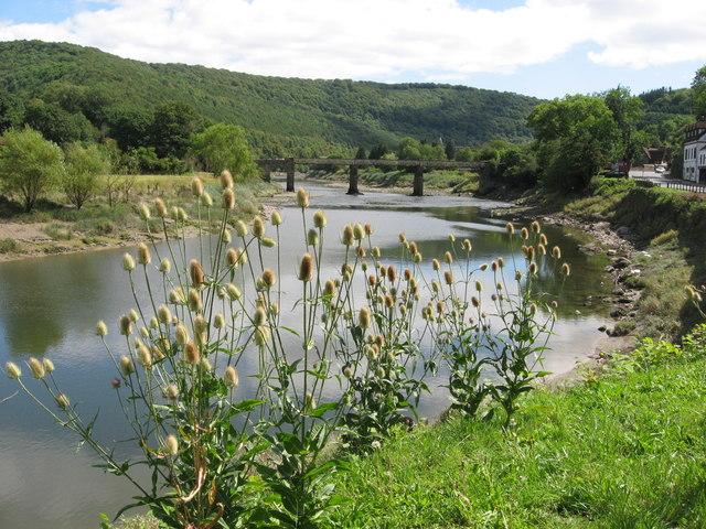 The River Wye near Tintern