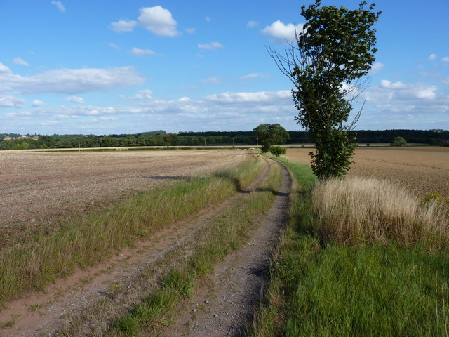 Down the bridleway towards Chesterton