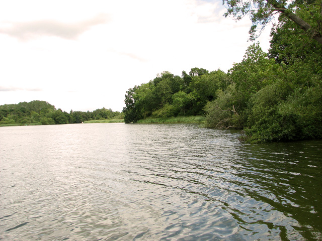 View along the southern edge of South Walsham Broad