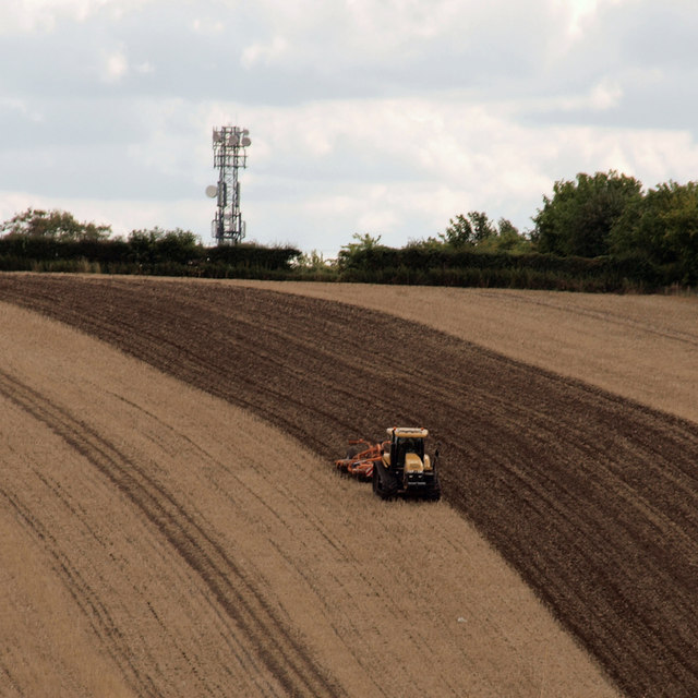 Cultivating on Beacon Hill