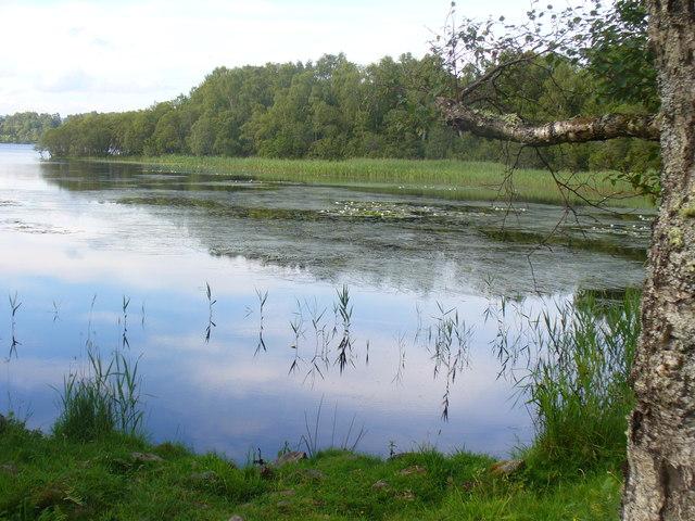 Reflections on Loch Kinord