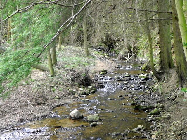 Sole Beck near Ilton