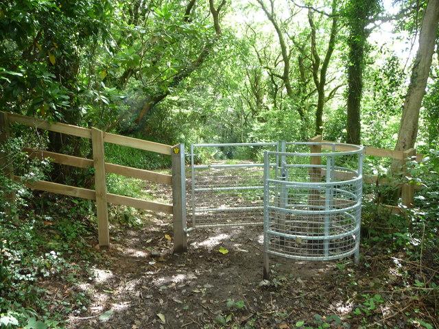 Kissing gate in Little Treffgarne Wood