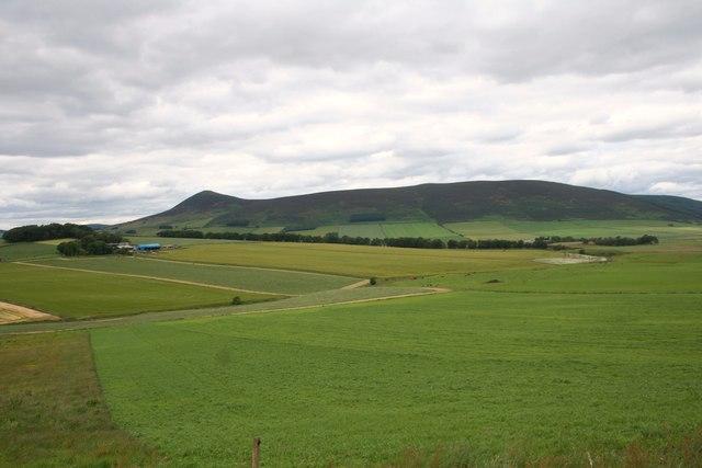 Kearn Fields