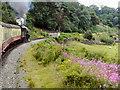 NZ8203 : North Yorkshire Moors Railway, Murk Esk Valley by David Dixon