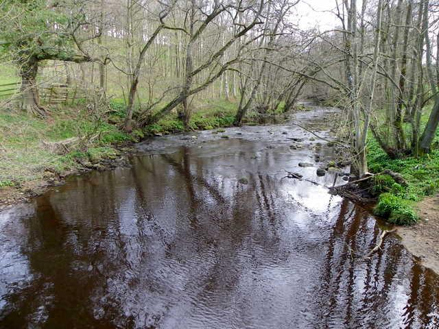 River Burn near Healey