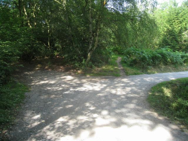 Lane to Zinzan Place