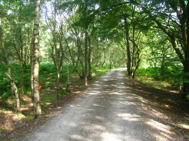 Access to Briff Farm