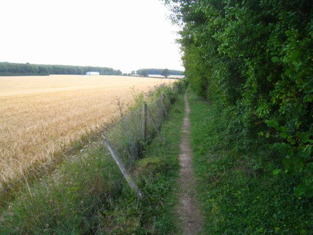 Path south of Oakley