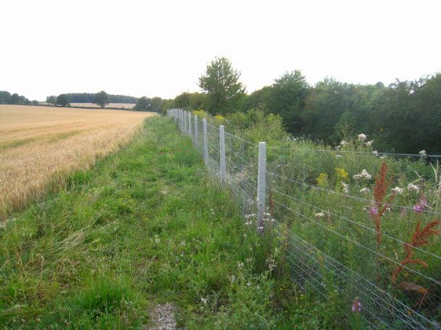 Footpath by the railway - Oakley