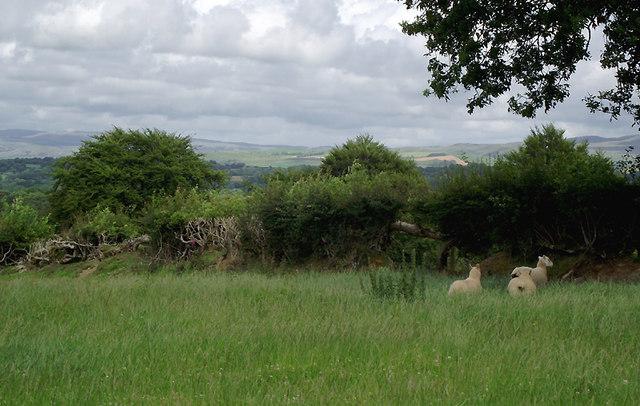 Farmland north-west of Olmarch, Ceredigion