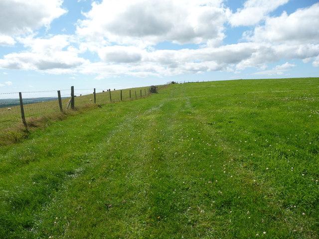Footpath on Great Treffgarne Mountain
