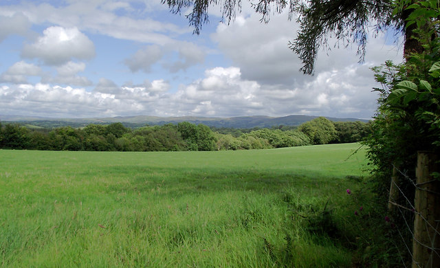 Pasture and woodland north-west of Olmarch, Ceredigion