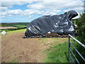 SM9324 : Silage or haylage storage in a field near Upper North Hill farm by Jeremy Bolwell