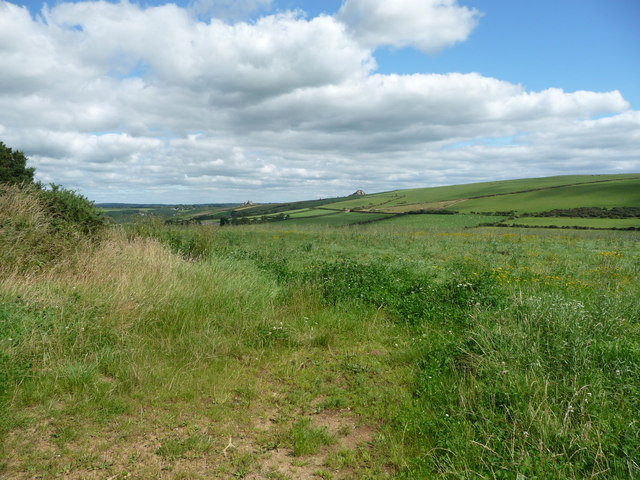 Fields above the Nant-y-coy brook