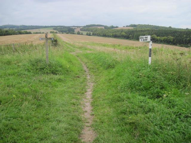 Bridleway to Bignor on Little Down