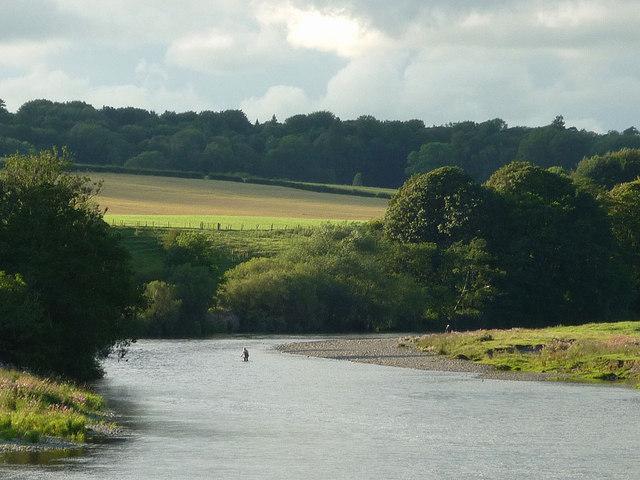 Fishing the Lune near Gressingham