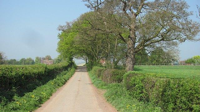 A minor road near Stanton Long