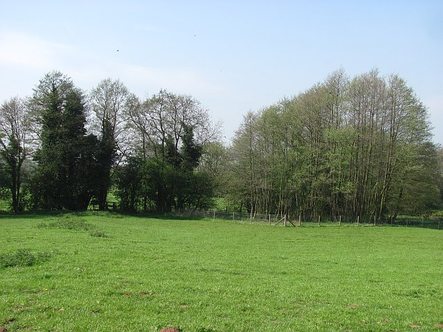 Grassland, Corvedale