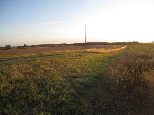 Track to Northfield Farm