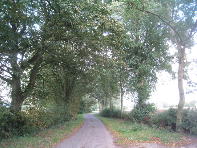 Green Lane, Pilham