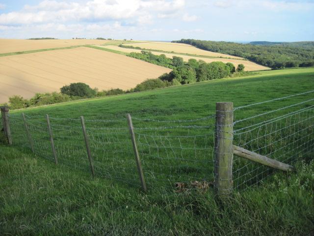 Towards Bury Hill