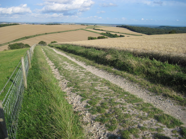 Footpath from Bignor Hill towards Westburton Hill