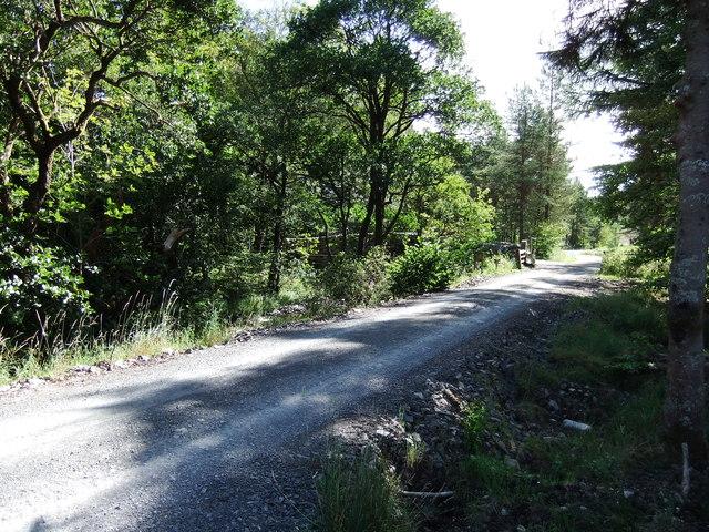 Track near Forrest Bridge
