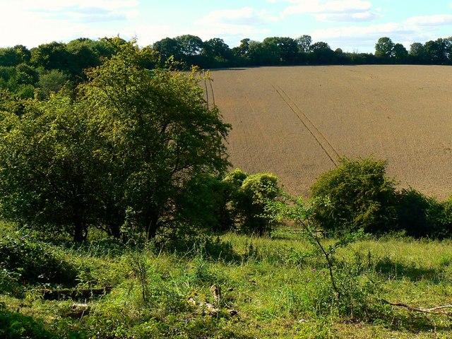 Farmland north-west of a byway near Weston