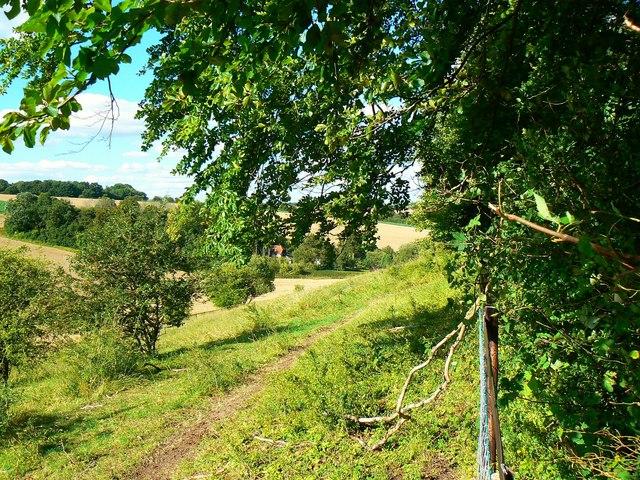 View towards Daldridge Barn, near Weston