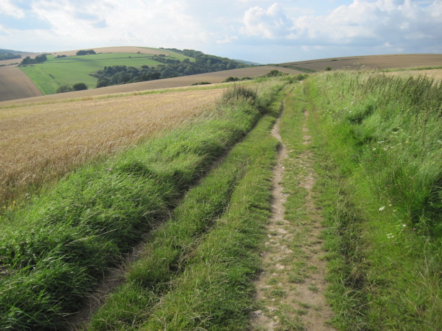 South Downs Way on Bury Hill