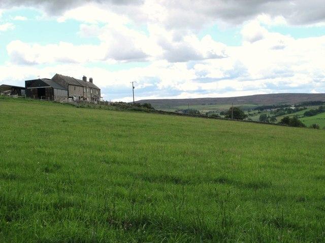 Pastures below Viewley