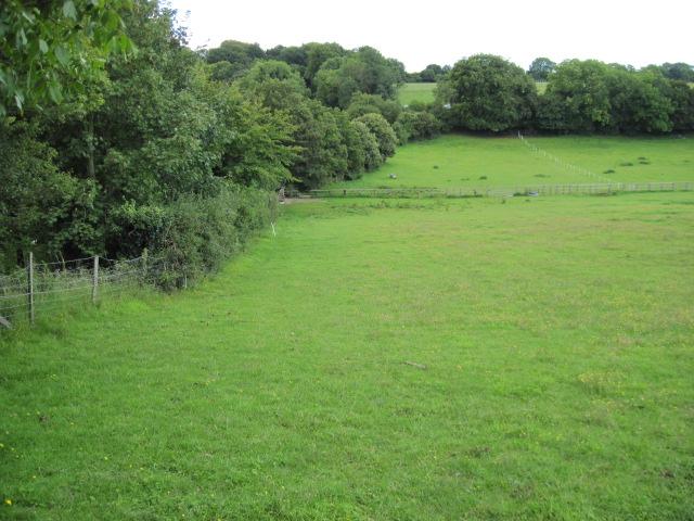 Footpath near Hensting Farm