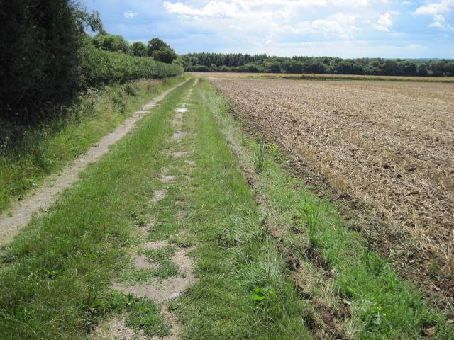 Footpath towards Hensting Farm