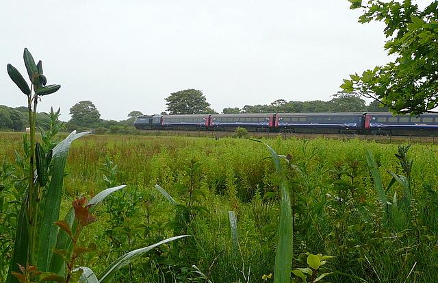 High Speed Train at Rosevidney