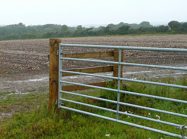 Farmland off Tredrea Lane